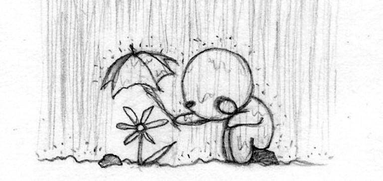Umbrella shading a plant from the rain