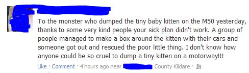 facebook status saving a kitten