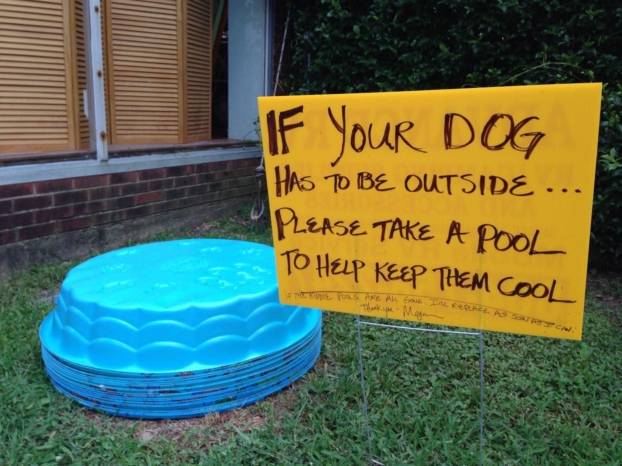 Free paddling pools for dogs kindness blog for Small paddling pool