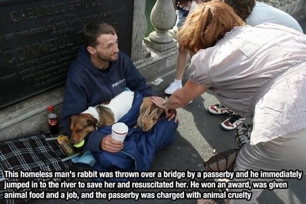 a homeless man saves his rabbit