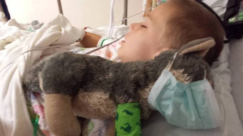 Joshua Wade, 9-Year-Old Boy, And His Stuffed Wolf Get The BEST Medical Treatment