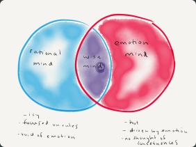 Wise Mind Diagram