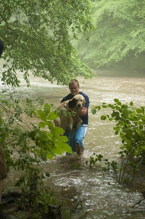 This guy saved a dog that was terrified and stranded in the middle of a creek. !