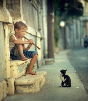 little boy a flute and a kitten