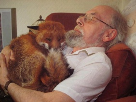 cropper the fox