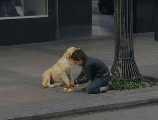 Kid with a Heart of Gold ! A homeless boy sharing his food with a homeless dog.