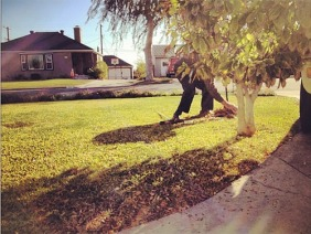 """That moment when you go outside to rake your front yard and you notice your neighbour is already doing it."" kindness"