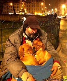 Suspended Coffees This man found these 2 dogs on a very cold night recently. He didn't have much to offer, but gave them all of his warmth! Major respect to him for his warm and caring hug!