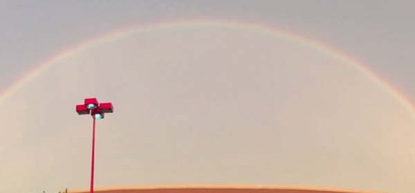 """To David, he knew Brenda was always looking over him. On the day she died, there was a double rainbow… and her and her son's favorite song was """"Somewhere Over the Rainbow."""""""