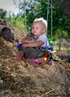 cat and baby on a swing