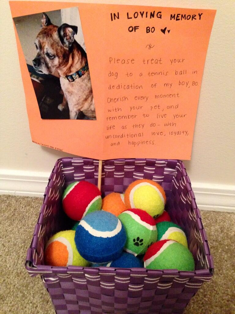 random act of kindness for passed away dog