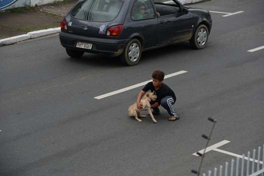 When the little boy saw the puppy getting hit at Rua Lauro Müller, in Itajaí, he just had to help. Jean Fernandes rushed to rescue the little dog. Honey, the little pup, was hit by a driver who didn't stop to help either the dog or the little boy. Thankfully, Honey was not seriously hurt and a vet gave her a clean bill of health.