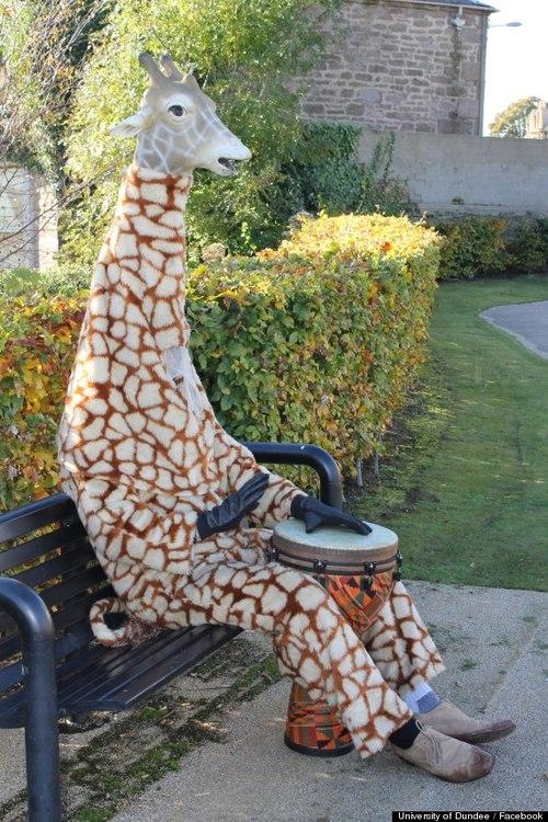 Armstrong Baillie, Kindness Giraffe