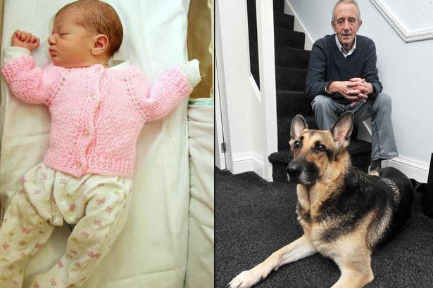 "A grandad whose dog discovered an abandoned baby in a Birmingham park spoke about the amazing pet rescue and said: ""We were just in the right place at the right time.""      Roger Wilday, 68, was walking German Shepherd Jade in Stechford when she inexplicably raced to bushes, then lay down next to what looked like a discarded carrier bag – and refused to return to him.      As the pensioner moved closer he realised what the loyal family pet had discovered: a newborn baby, who has now been named after her four-legged rescuer.      Roger said: ''I walked over and saw a carrier bag – then I saw it move. I thought it was a bag of kittens, but then I saw her little arms and a head, and the baby started to cry.'      The little girl was taken to Heartlands Hospital where staff named her after hero pet Jade.      On Friday pictures and video were released of the six-pound baby , who was said to be ""alert, happy and contented"" as she continues to recover."