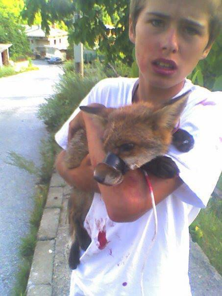 This is a picture of Luke Rowles when he was 15. He saw a group of men in a garden, kicking and beating this poor fox whose mouth they had taped up. Luke went charging into the garden with no regard for his own safety, shouted at the men and grabbed the fox. After seeing to its wounds, he released the fox. Now he continues rescuing dogs for RSDR. Brave and compassionate young man with a heart of gold.