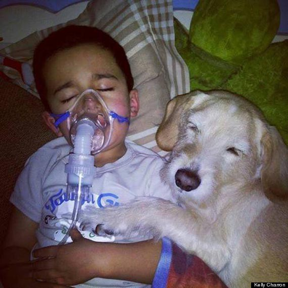 """Mason and his dog, Prada, are both 5 years old. They've lived in Queens, N.Y., since Mason's mom, Kelly Charon, rescued Prada in April 2012.  Last October, during Superstorm Sandy, their family was exposed to mold after the dining room ceiling collapsed.  Charon told The Huffington Post that Mason and his siblings then began experiencing """"chest infection after chest infection."""" And in November, when Mason was having difficulty breathing one night, Charon hooked him up to a nebulizer. She left the room after he fell asleep.  When she came back, she found him and Prada [as shown in the photo above]  Charon told HuffPost that Mason and his siblings haven't gotten sick since the mold was removed from their house. But she'll never forget this moment.  """"It took my breath away,"""" she said."""""""