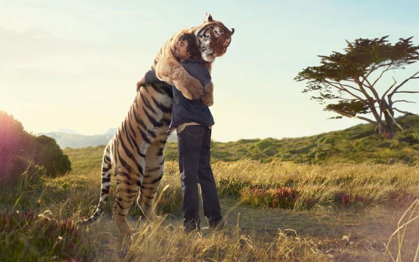 tiger hugging his human friend