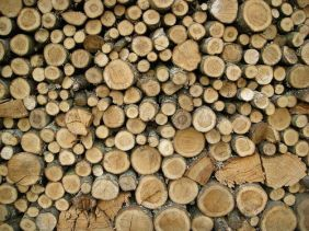 "A home in Indiana is warm amid freezing temperatures thanks to an anonymous man who brought split wood to the family that otherwise wouldn't have been able to afford it. The good Samaritan responded to a plea on Facebook that a family was in need. Jeanette Walker with the Greene County Middle Way House, said the woman had originally called to get help from the Salvation Army. ""I got a call from a girl [who] said she had two little ones under the age of five,"" Walker told the Greene County Daily World. ""She was calling for Salvation Army help, and I knew they didn't have any funds for this. I asked her if I could put it on Facebook, and I put out a plea for help."" Within an hour, Walker said the family was warm. ""She (the woman) called me back, and she said [a man] (whom she didn't know) brought a whole rick of firewood, and they had enough to last a while. She said, 'We are warm and toasty and I can feel my feet again.'"" Source: Daily Saint"