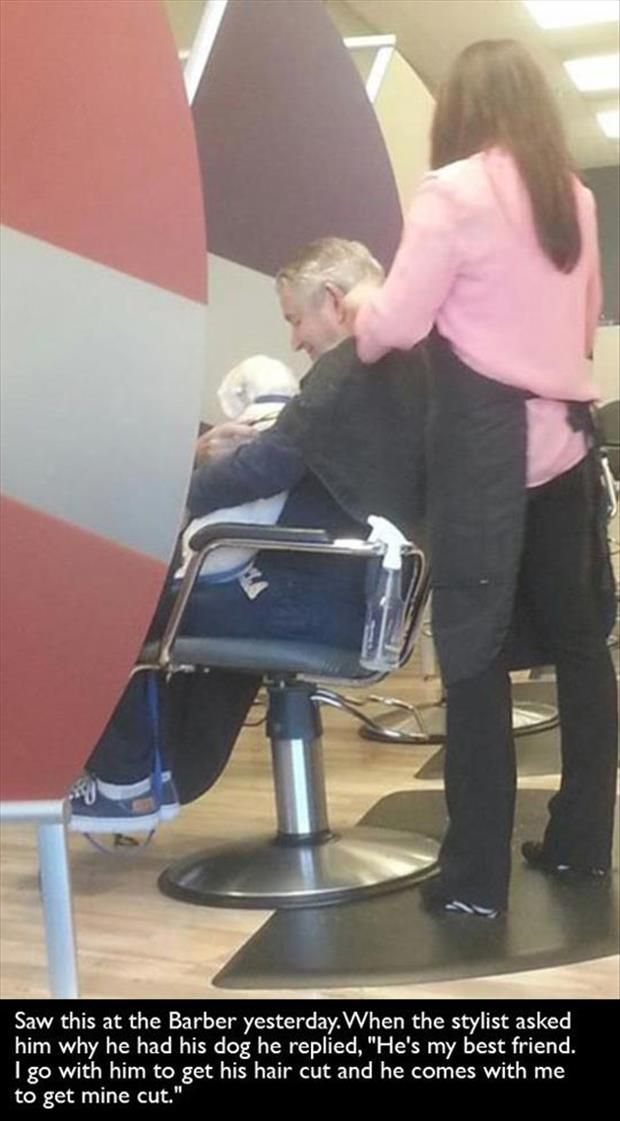 man and dog best friends getting a haircut