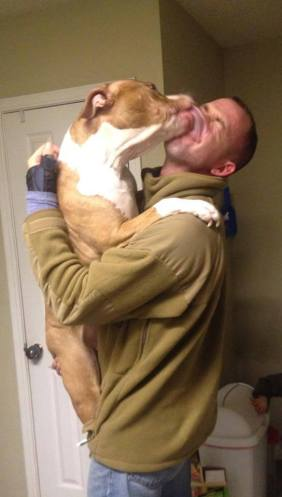 dog licking his master just returned from afghanistan