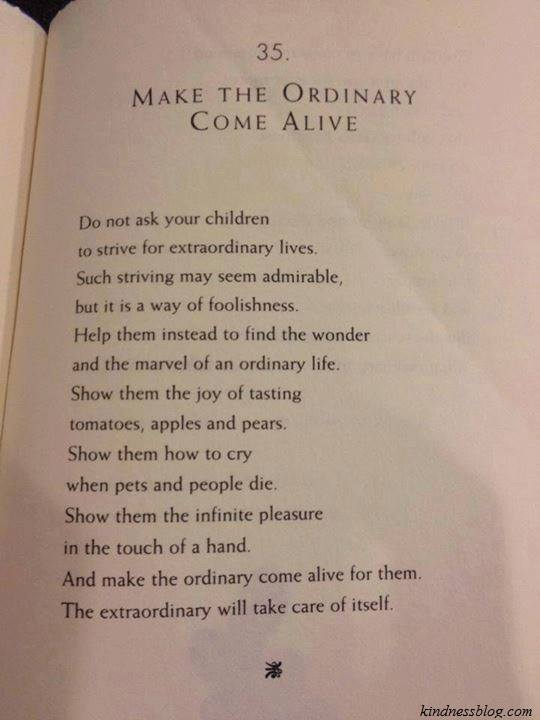 Helping Children to Appreciate the Extraordinary Found Within the Ordinary