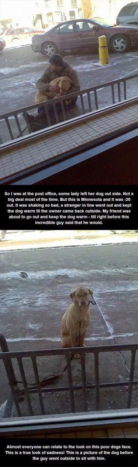 The Dog Cuddler