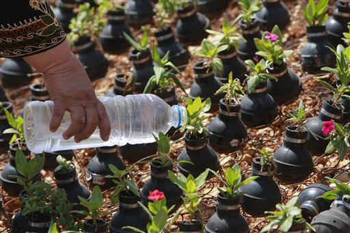 West Bank garden of tear gas grenades