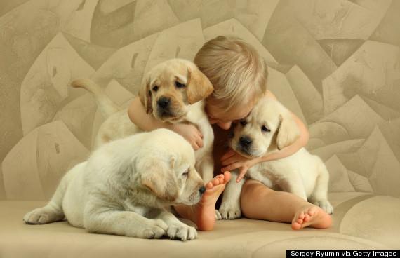 Boy with three puppies