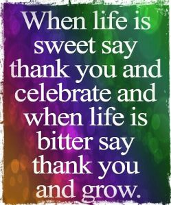 Thank You Quote on a Multicolored Background