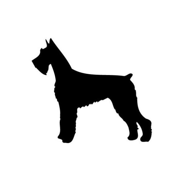 doggy silhouette schnauzer