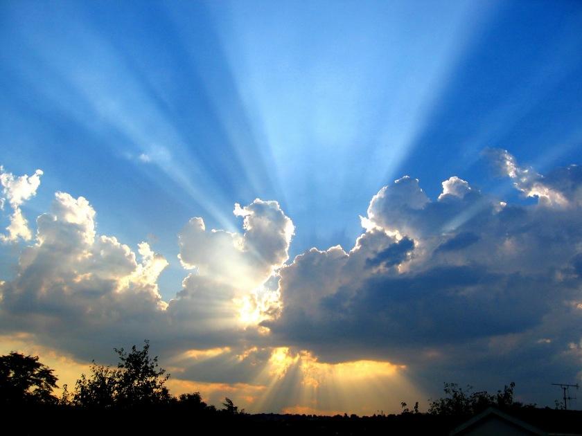 Sunlight_-_wallpaper_free_at_google_112211334