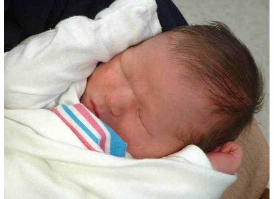 baby-jack cariello