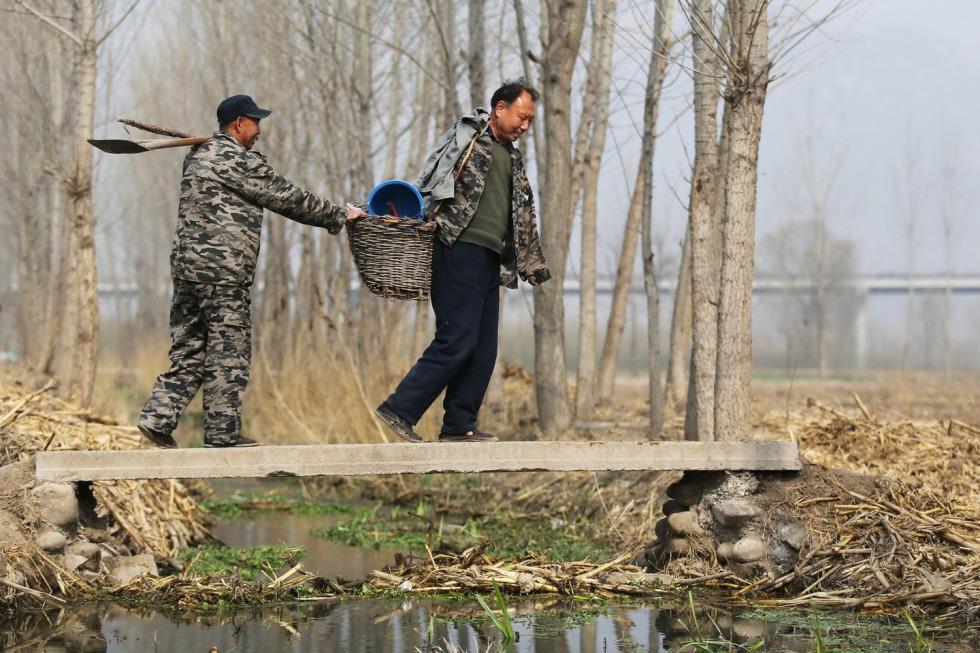 Jia Haixa and Jia Wenqi