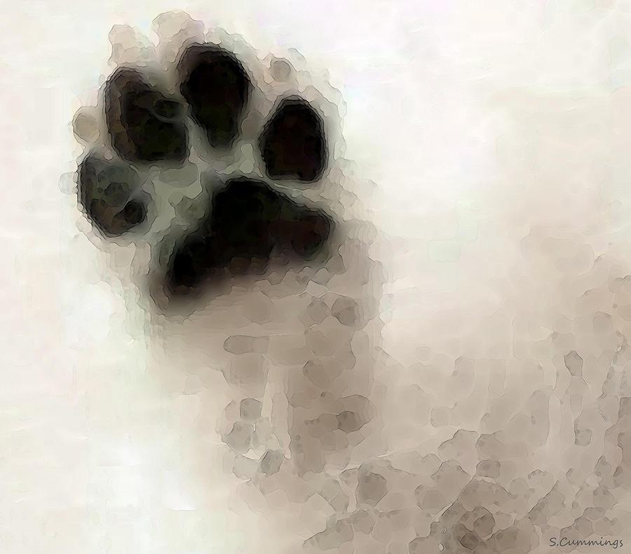 Helping My Dog Die – by Amy Selwyn – Kindness Blog
