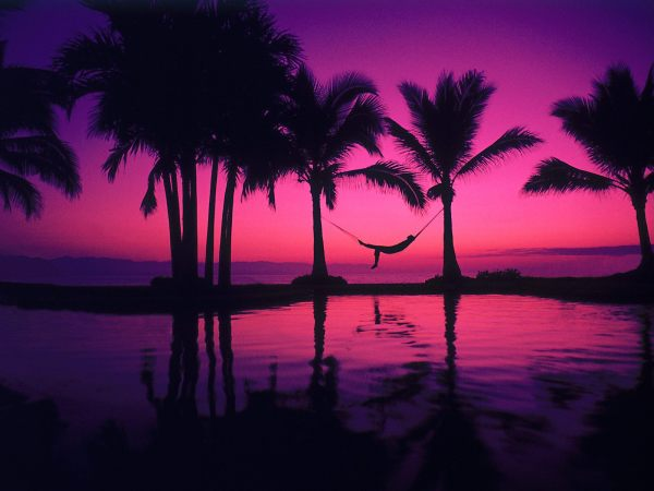 hammock wallpaper