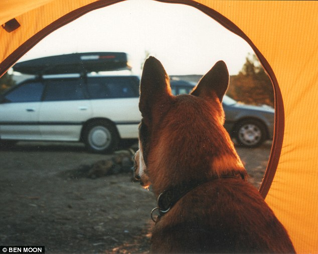 Denali and Ben – A Beautiful Story of Friendship and Loyalty