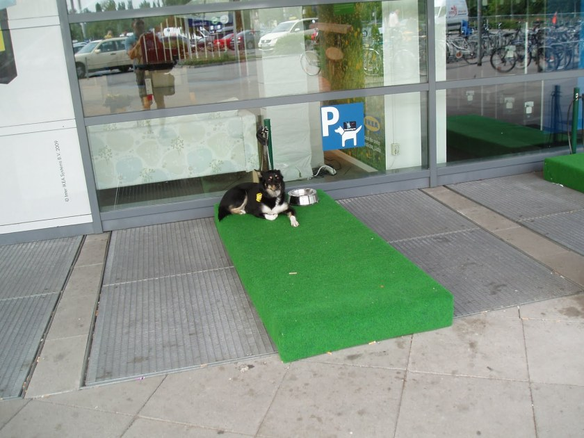 Doggy Parking Bays