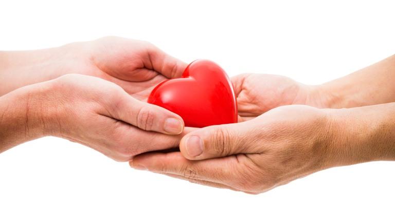 organ donation kindness