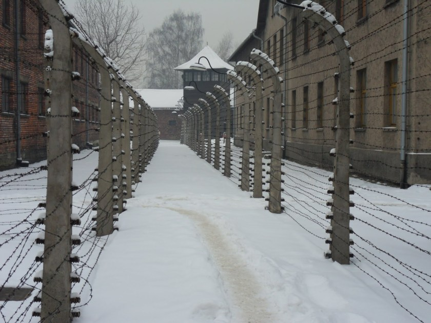 Concentration Camp Survivor