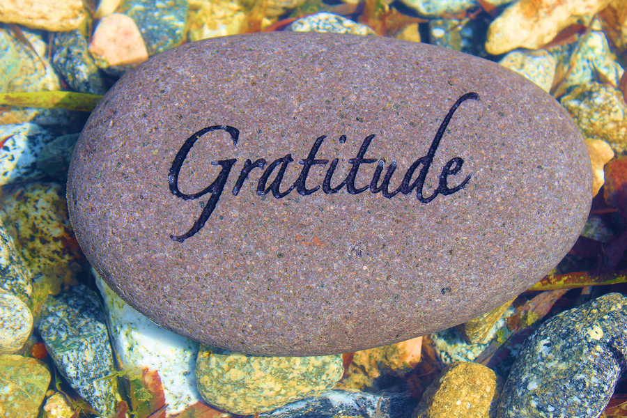 How Gratitude Changes the Brain - By Sarah Chauncey