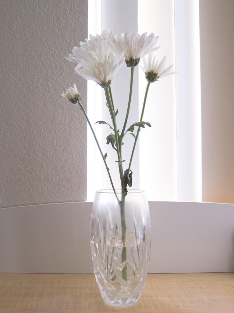kindness flowers