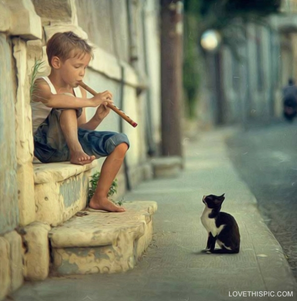 Boy Playing Flute To Cat