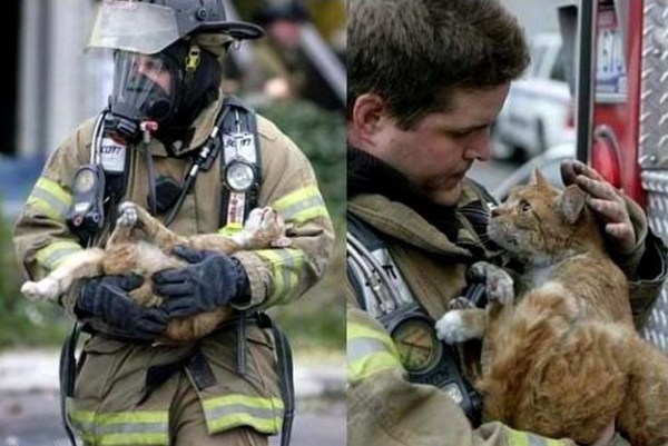 firefighter and a cat he saved from a burning building.