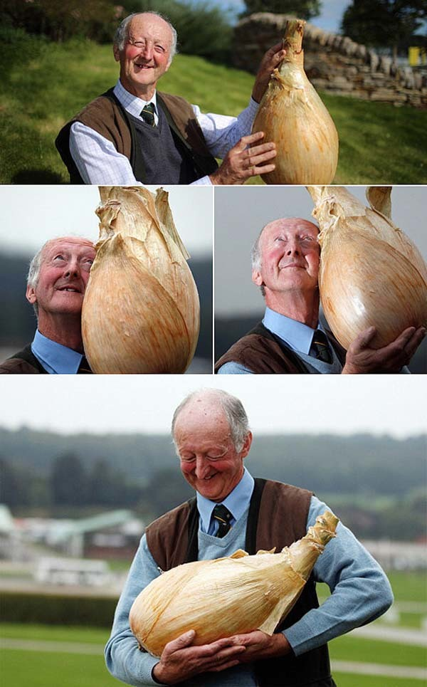 Old man proudly poses with one of his biggest onions.